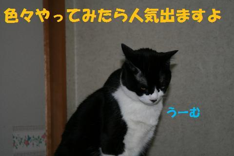 045_convert_20100704181154.jpg