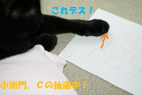 046_convert_20100808205230.jpg