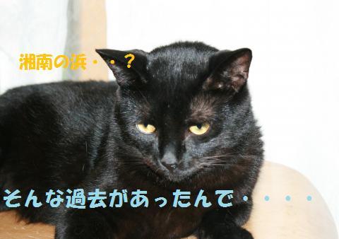 049_convert_20100814170001.jpg