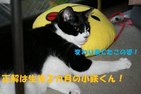 049_convert_20100920212942.jpg