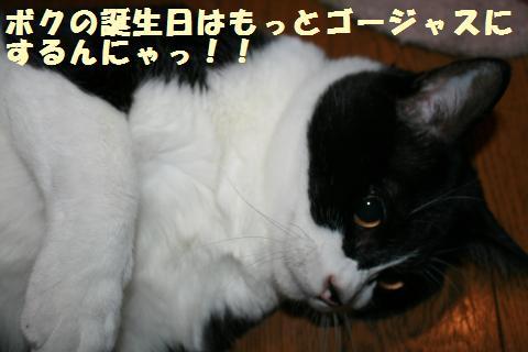 051_convert_20110907203951.jpg