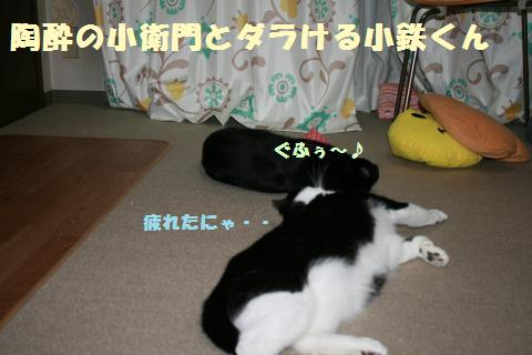 054_convert_20111114171049.jpg