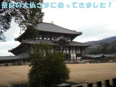 059_convert_20120129225259.jpg