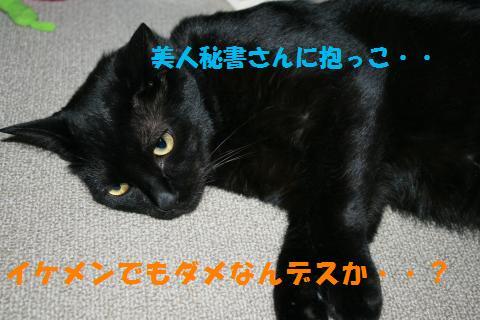 061_convert_20100722194439.jpg