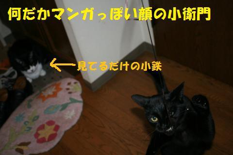 083_convert_20100913215911.jpg