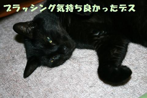 083_convert_20110626224252.jpg