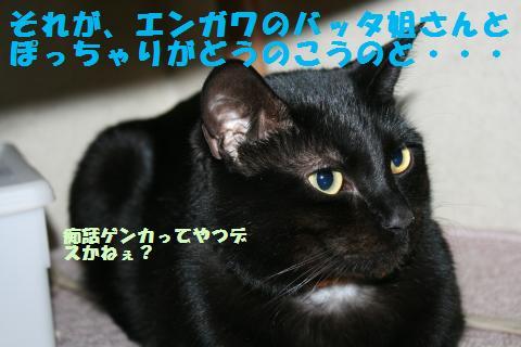 092_convert_20110228233221.jpg