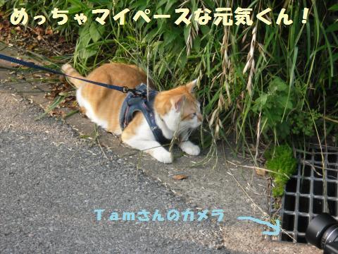 122_convert_20110611214718.jpg