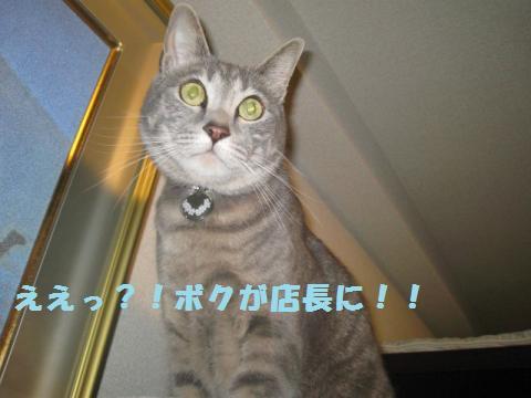 繧ク繝・繝ゥ・胆convert_20110521234136