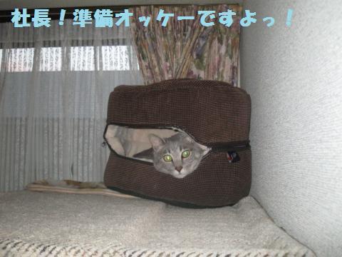 繧ク繝・繝ゥ・狙convert_20110521234105