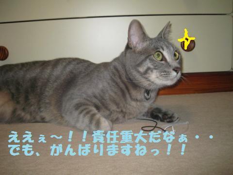 繧ク繝・繝ゥ・廟convert_20110521234214