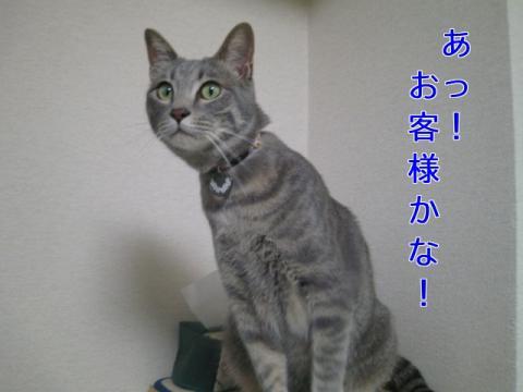 繧医≧縺薙◎・・シ狙convert_20110523175839