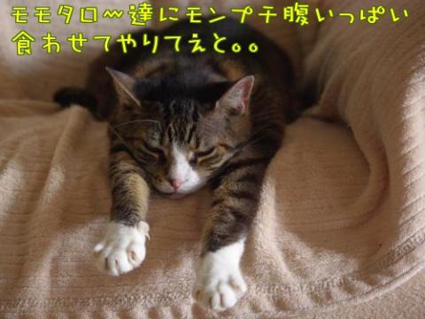 Fmnz6_convert_20101126213019.jpg
