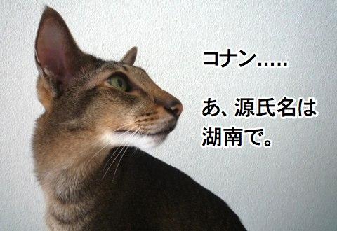 konan_1.jpg