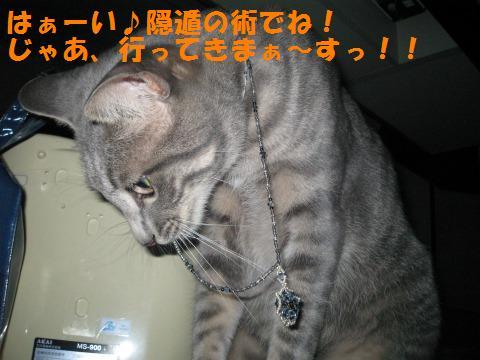 s_IMG_0706.jpg