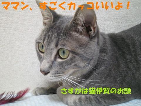 s_IMG_0895.jpg
