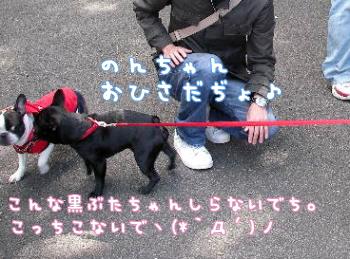 2009031607.jpg