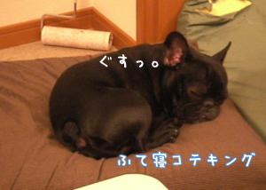 2009052913.jpg