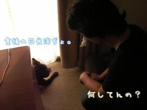 2009080509.jpg