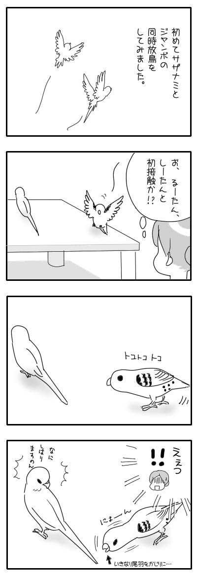サザナミ漫画53