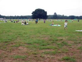 20060729-011.jpg