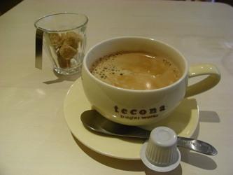 tecona5.jpg