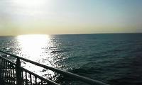 奄美への途中の海
