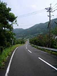 上屋久島 道端