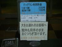 IMGP0624.jpg