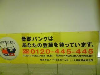 Image119.jpg