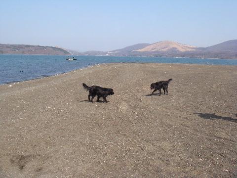 lake1-4-7.jpg