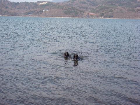 lake3-4-7.jpg