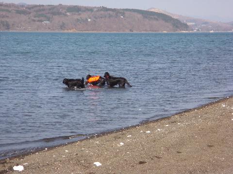 lake5-4-7.jpg
