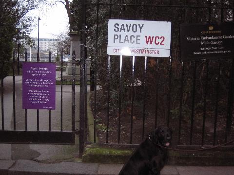 savoy12-27.jpg