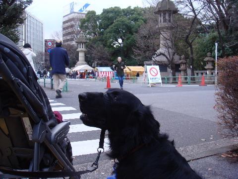 yasukuni1-1.jpg