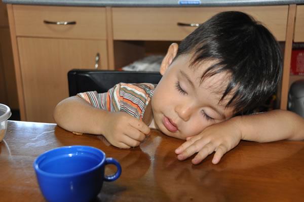 食べ寝05