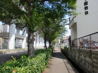 CIMG4664(1).jpg