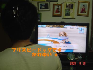 DSC03064.jpg