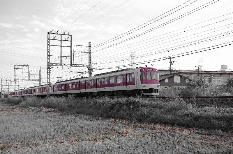 ss-IMGP9827.jpg