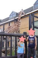 福山市立動物園4
