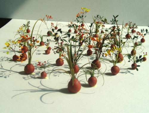 bonsai40yoko.jpg