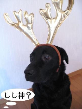 Merry-Cristmas-2008-1.jpg