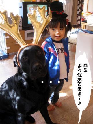 Merry-Cristmas-2008-2.jpg