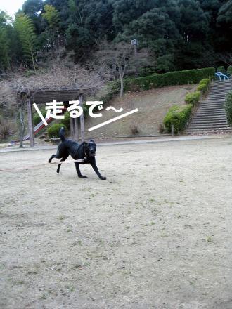 hatuhasiri5.jpg