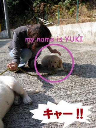 yuki13.jpg