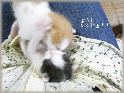 いくじょ!