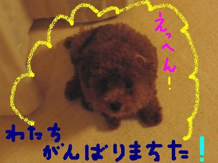 moka5.jpg