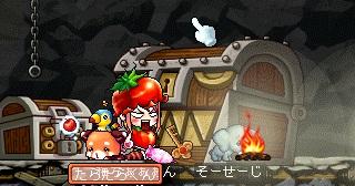 MapleStory_2010_0511_165717_133.jpg