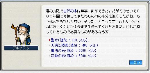 MapleStory_2010_0511_205736_094.jpg