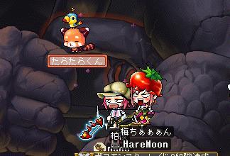 MapleStory_2010_0529_000808_790.jpg